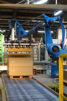 Demeyere : Robot de palettisation