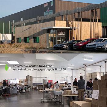 Les Coteaux Nantais nouvelle usine de transformation à Remillé (44)
